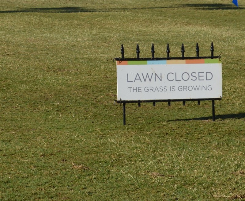Banner image for Main Lawn Closed until May 28
